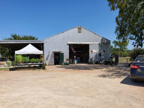 Bastrop Farmer's Market